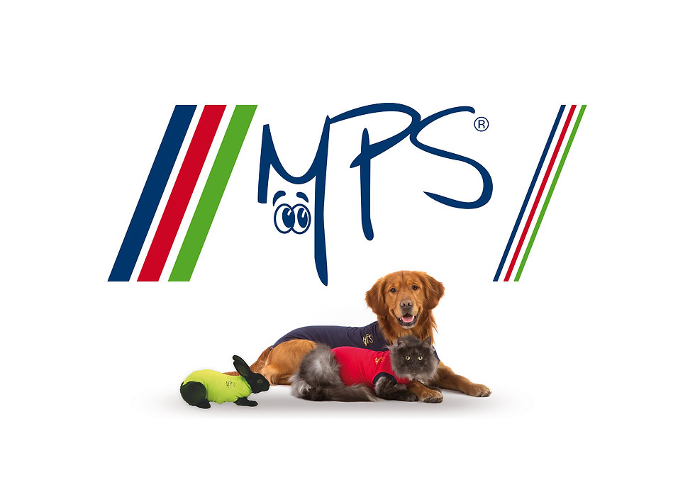 MPS-1737x1200-1.jpg