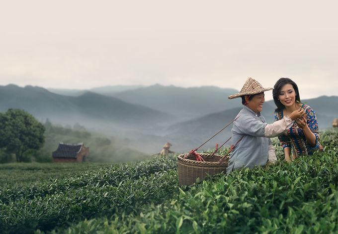 AsianDream-Home-1737x1200.jpg