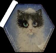 מגנט משושה רקע כחול שמים חתול לבן פנים שחורות.png