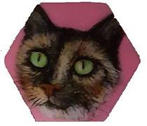 מגנט משושה רקע ורוד פני חתולה טריקולורית.jpg