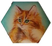 מגנט משושה רקע טורקיז חתול גינגי.jpg