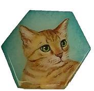 מגנט משושה חתול גינגי רקע טורקיז.jpg