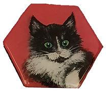 מגנט משושה רקע ורוד חתול שחור לבן.jpg