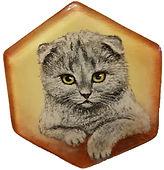 מגנט משושה רקע חום חתול סקוטי אפור.jpg