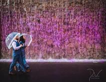 Roma Street Parklands Wedding