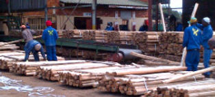 preparing-dunnage-timber.jpg