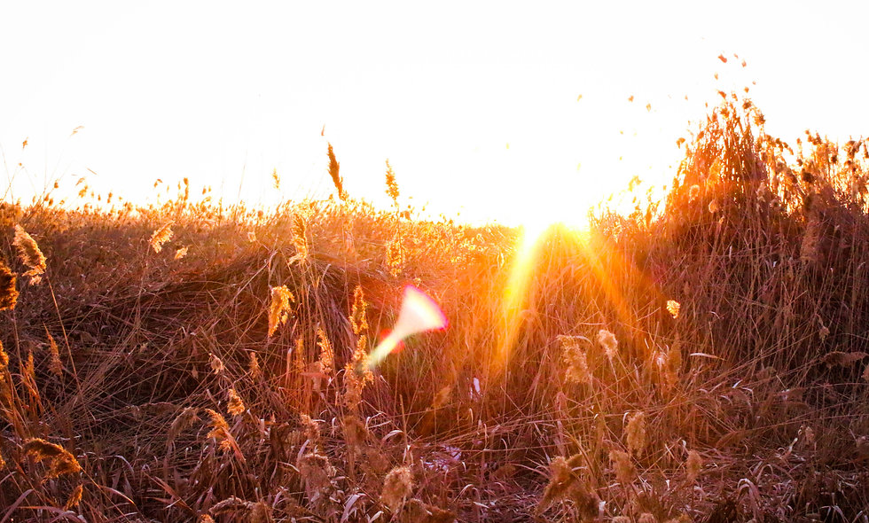 Sparks of Light Print 4