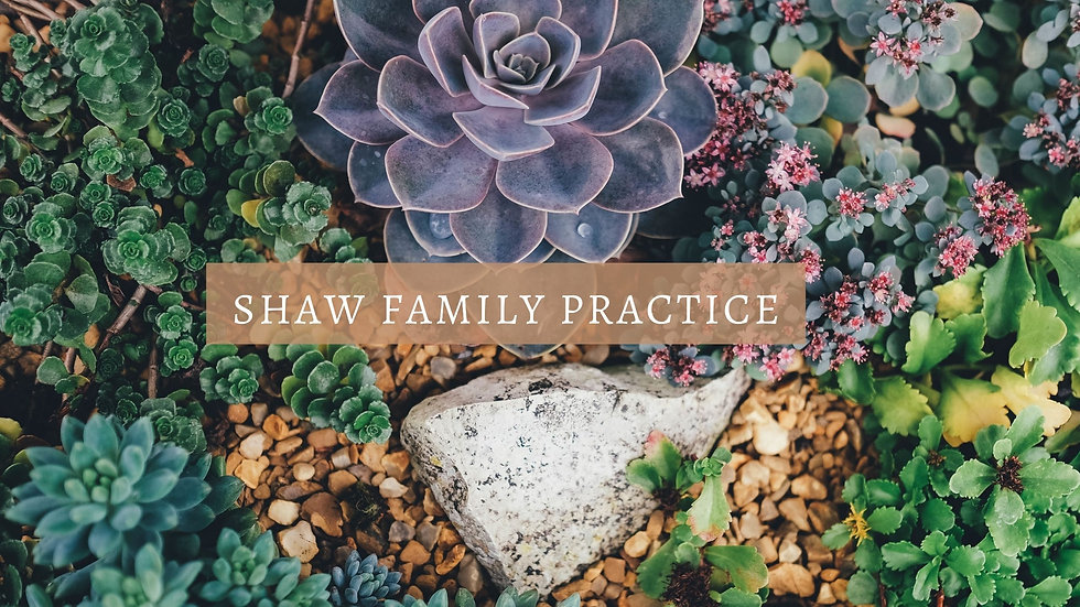 Succulents and natural earth background and Shaw Family Practice written in simple white elegant fon