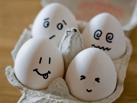 El huevo y sus propiedades