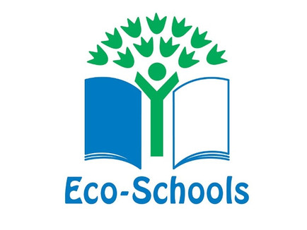First Eco-Schools Video Meeting