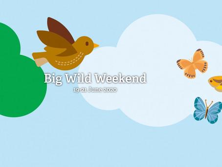 Big Wild Weekend by The Wildlife Trusts