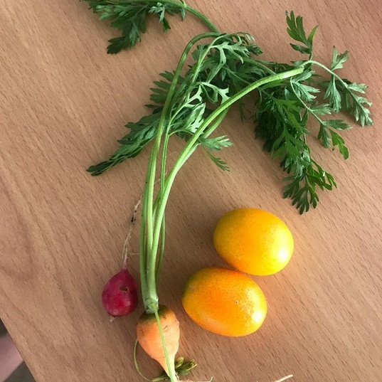 Home Grown Fruit and Vegetables