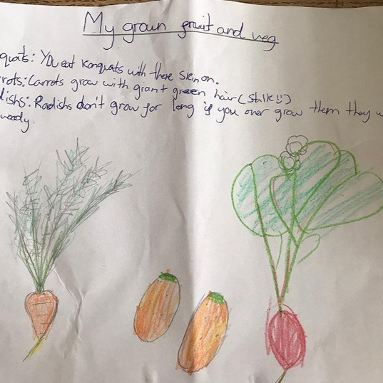 Writing About Growing Your Own Fruit and Veg