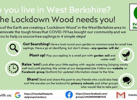 Help Create A Lockdown Wood