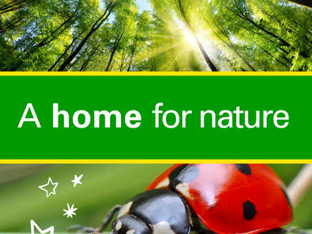 Ultimate STEM Challenge: A Home For Nature