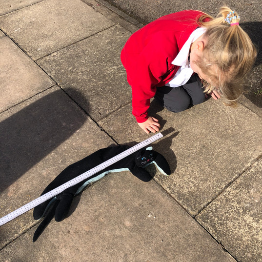 Outdoor Learning - Measuring