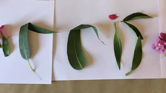 Daily Challenge - Write Your Name with Natural Materials