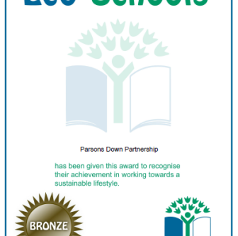 Eco Schools Bronze Award!