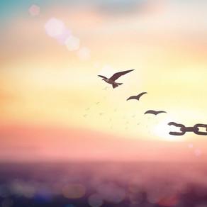 Wassermann - Der Ruf der Freiheit