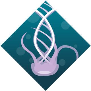 Jellyfish DNA