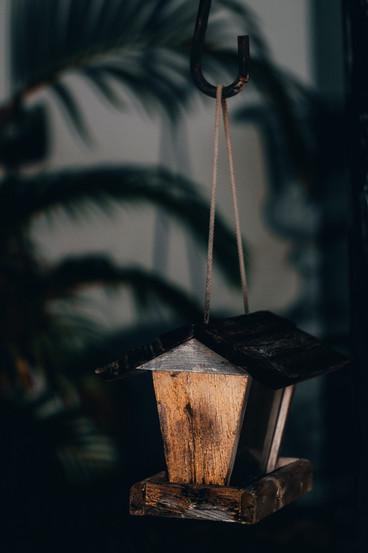 BirdHouse1-2.jpg