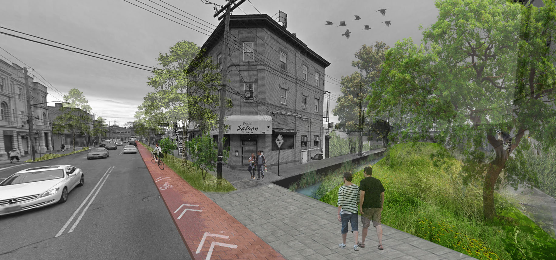 Staten Island [ Amped ] Ecotones