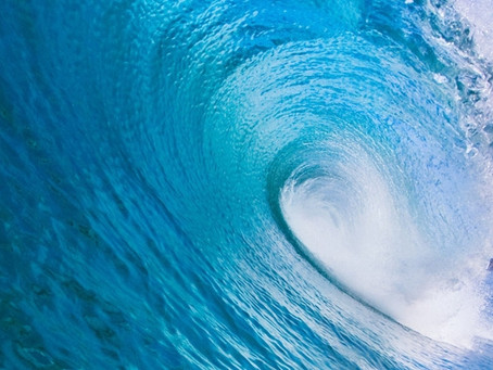 Riding the Wave of Enthusiasm