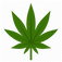 cannabis-icon.png