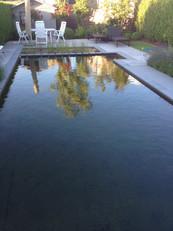strakke zwemvijver