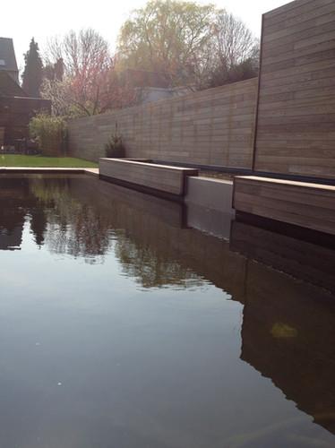 stadstuin kleine tuin met zwemvijver zwembad