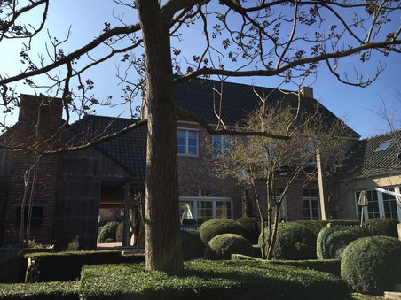 Buxusbollen en -wolken tuinaannemer tuinarchitect melle
