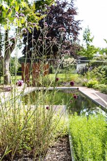 stadstuin kleine tuin met water zwemvijver