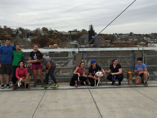 Checking out the Manayunk Bridge!