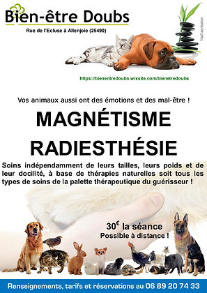 Soins animaux