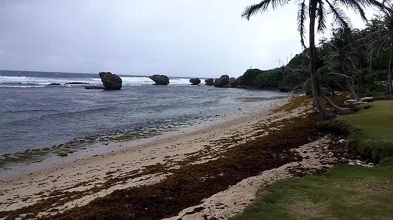 Bathesheba beach area, Barbados