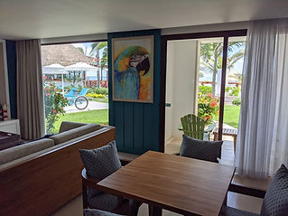 MIRRC Presidential Chill Out Suite ocean