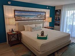 MIRRC Paradise Room bed.jpg