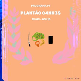 PLANTÃOC4NN3S-LayoutSite.png