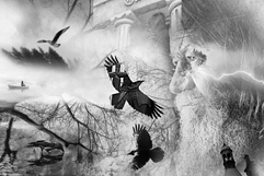 The Call Of Odin - Flight Of The Ravens.