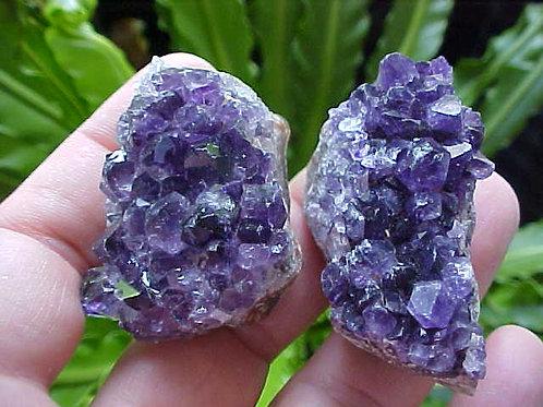 D1115 GemQz Purple Mini Amethyst Crystal Cluster Pair Nice !!!