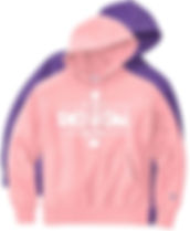 Champion S101 Hoodie Sweatshirt