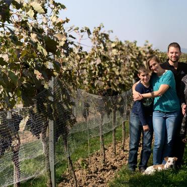 MAGULA rodinné vinárstvo