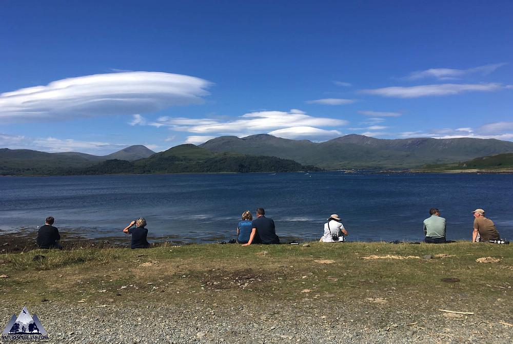 mull, isle of mull, nature scotland, mull wildlife, mull wildlife tours, nature scotland, iolo williams,