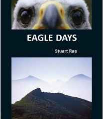 Eagle Days  by Stuart Rae