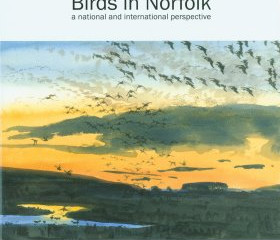 Birds in Norfolk – A national and International perspective by Andy brown and James McCallum
