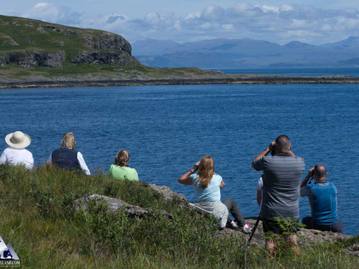 THE ISLE OF MULL EXPEDITION WITH IOLO WILLIAMS