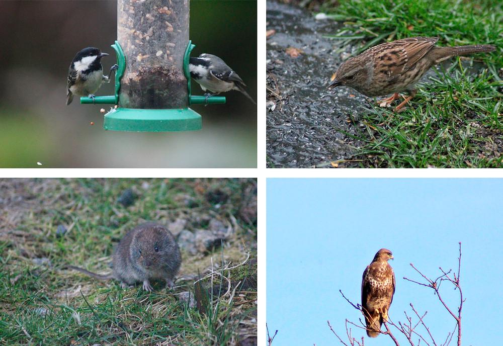 Photography, Mull, Isle of Mull, Photo Tours, Photo Workshops,