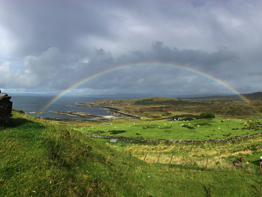 Rainbows and a Merlin...