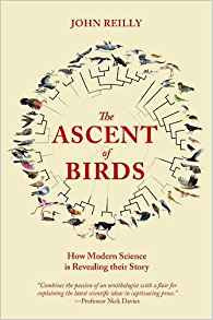 Ascent of Birds by John Reilly