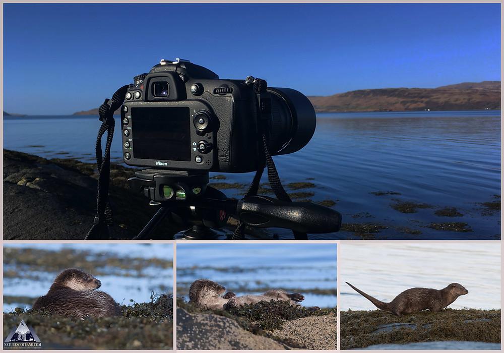Mull, Isle of Mull, Photo Workshops, Mull Photography,